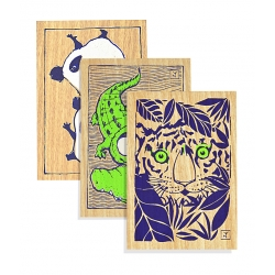 DANS LA JUNGLE - Lot 3 cartes A6
